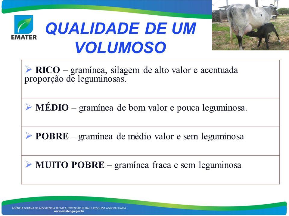 QUALIDADE DE UM VOLUMOSO RICO – gramínea, silagem de alto valor e acentuada proporção de leguminosas. MÉDIO – gramínea de bom valor e pouca leguminosa