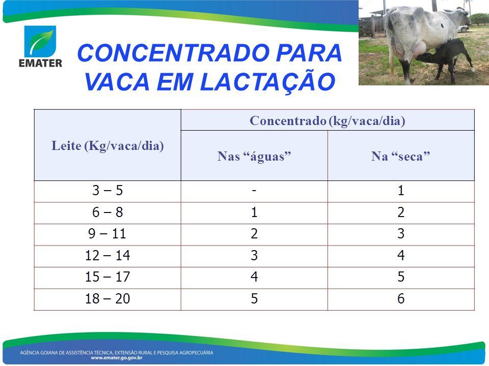 CONCENTRADO PARA VACA EM LACTAÇÃO Leite (Kg/vaca/dia) Concentrado (kg/vaca/dia) Nas águasNa seca 3 – 5-1 6 – 812 9 – 1123 12 – 1434 15 – 1745 18 – 205