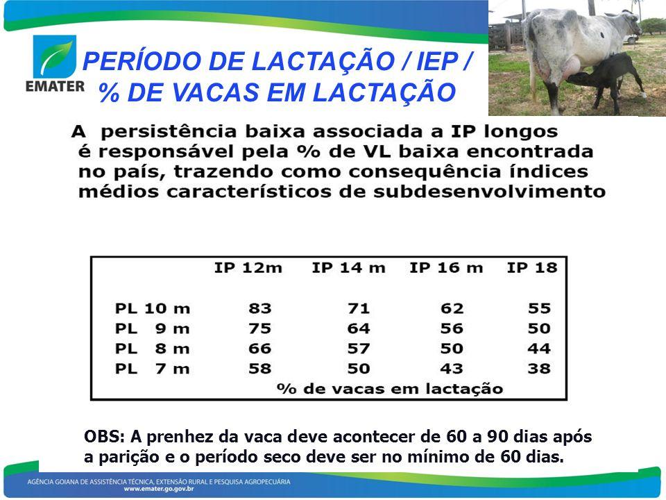 PERÍODO DE LACTAÇÃO / IEP / % DE VACAS EM LACTAÇÃO OBS: A prenhez da vaca deve acontecer de 60 a 90 dias após a parição e o período seco deve ser no m