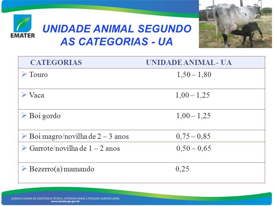 UNIDADE ANIMAL SEGUNDO AS CATEGORIAS - UA CATEGORIAS UNIDADE ANIMAL - UA Touro 1,50 – 1,80 Vaca 1,00 – 1,25 Boi gordo 1,00 – 1,25 Boi magro/novilha de