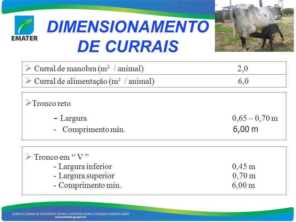 DIMENSIONAMENTO DE CURRAIS Curral de manobra (m² / animal) 2,0 Curral de alimentação (m² / animal) 6,0 Tronco reto - Largura 0,65 – 0,70 m - Comprimen