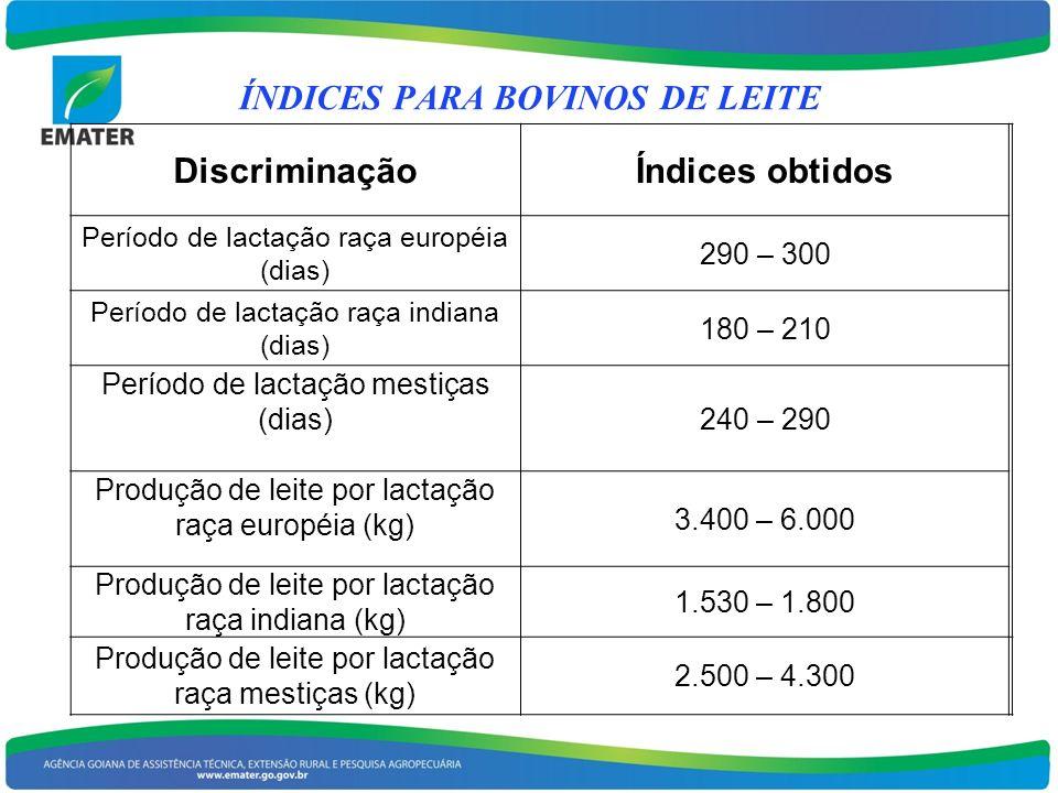 DiscriminaçãoÍndices obtidos Período de lactação raça européia (dias) 290 – 300 Período de lactação raça indiana (dias) 180 – 210 Período de lactação