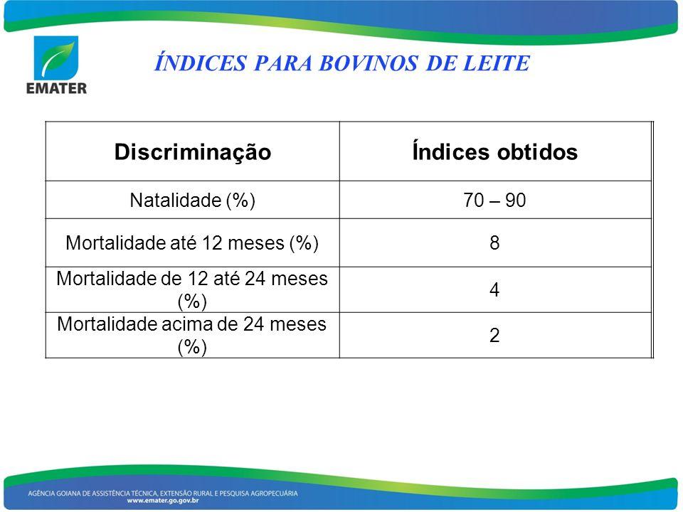 DiscriminaçãoÍndices obtidos Natalidade (%)70 – 90 Mortalidade até 12 meses (%)8 Mortalidade de 12 até 24 meses (%) 4 Mortalidade acima de 24 meses (%