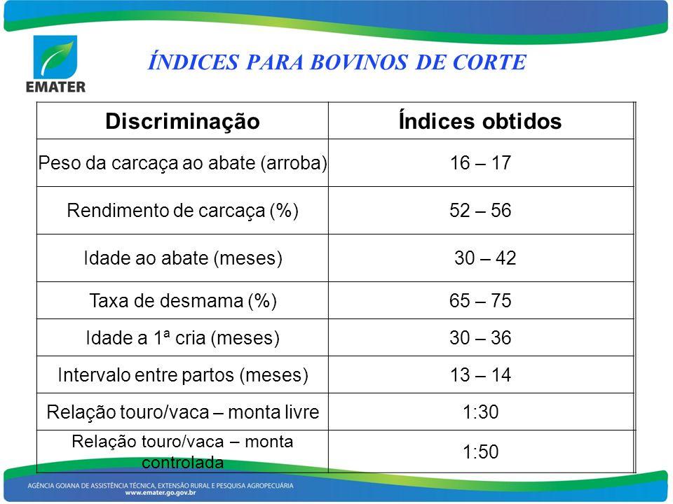 DiscriminaçãoÍndices obtidos Peso da carcaça ao abate (arroba)16 – 17 Rendimento de carcaça (%)52 – 56 Idade ao abate (meses) 30 – 42 Taxa de desmama