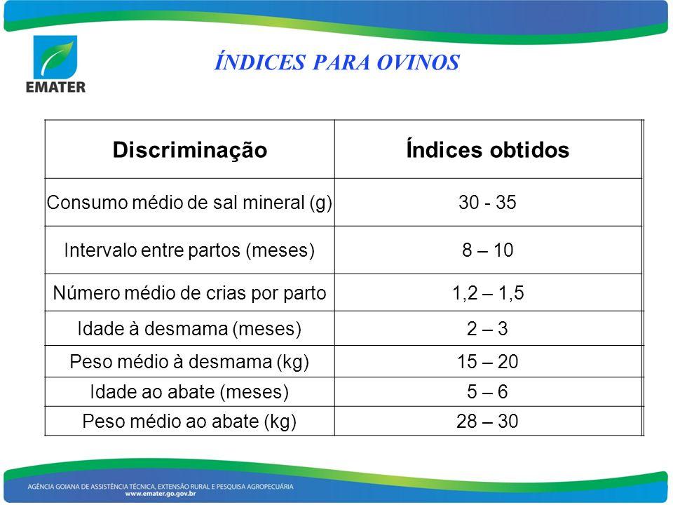 DiscriminaçãoÍndices obtidos Consumo médio de sal mineral (g)30 - 35 Intervalo entre partos (meses)8 – 10 Número médio de crias por parto1,2 – 1,5 Ida