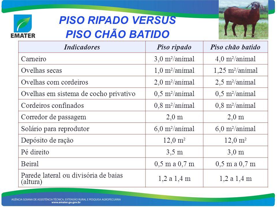 PISO RIPADO VERSUS PISO CHÃO BATIDO IndicadoresPiso ripadoPiso chão batido Carneiro3,0 m²/animal4,0 m²/animal Ovelhas secas1,0 m²/animal1,25 m²/animal