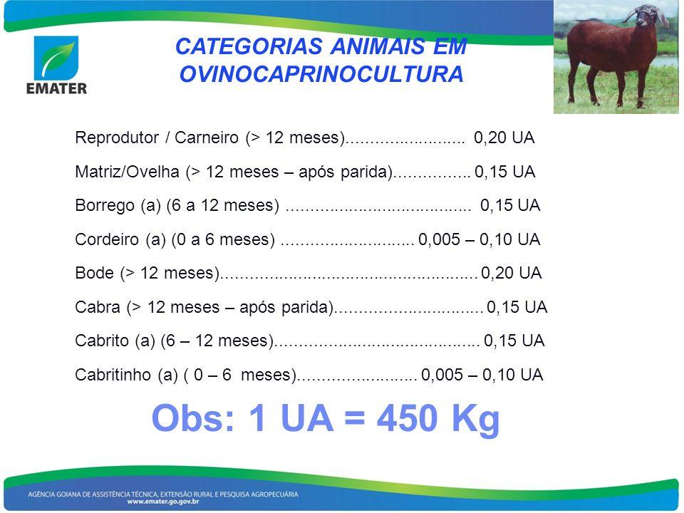 CATEGORIAS ANIMAIS EM OVINOCAPRINOCULTURA Reprodutor / Carneiro (> 12 meses)......................... 0,20 UA Matriz/Ovelha (> 12 meses – após parida)