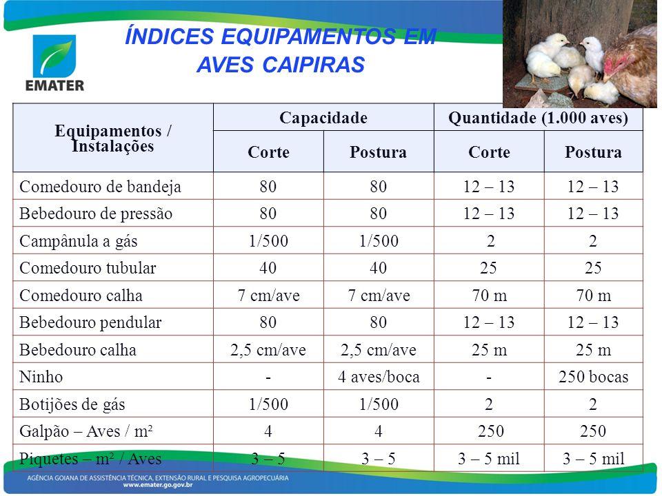 ÍNDICES EQUIPAMENTOS EM AVES CAIPIRAS Equipamentos / Instalações CapacidadeQuantidade (1.000 aves) CortePosturaCortePostura Comedouro de bandeja80 12