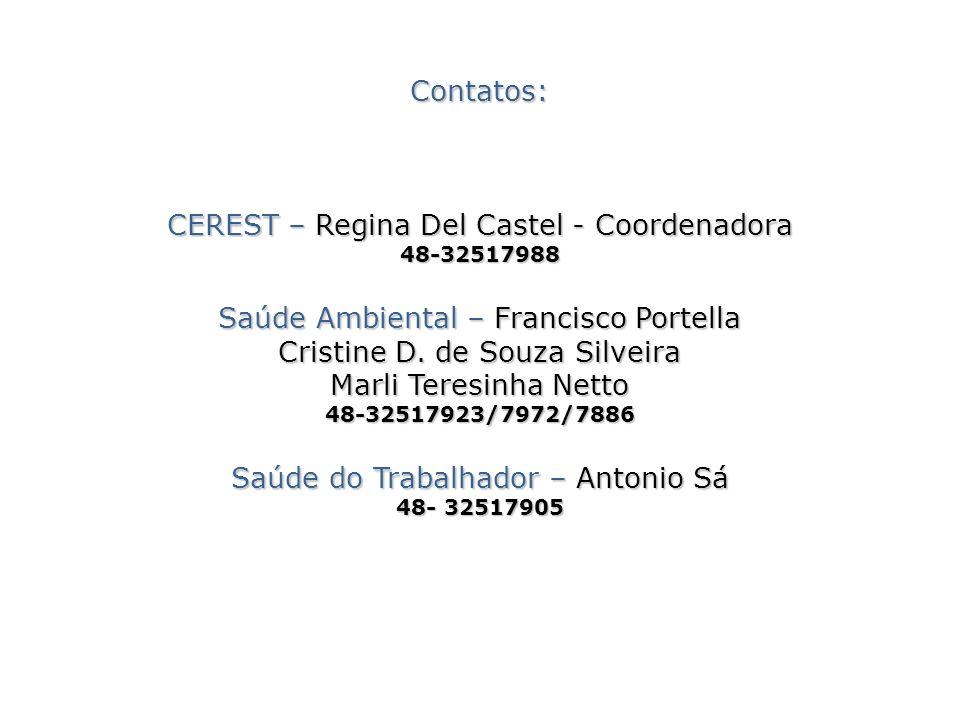 Contatos: CEREST – Regina Del Castel - Coordenadora 48-32517988 Saúde Ambiental – Francisco Portella Cristine D. de Souza Silveira Marli Teresinha Net