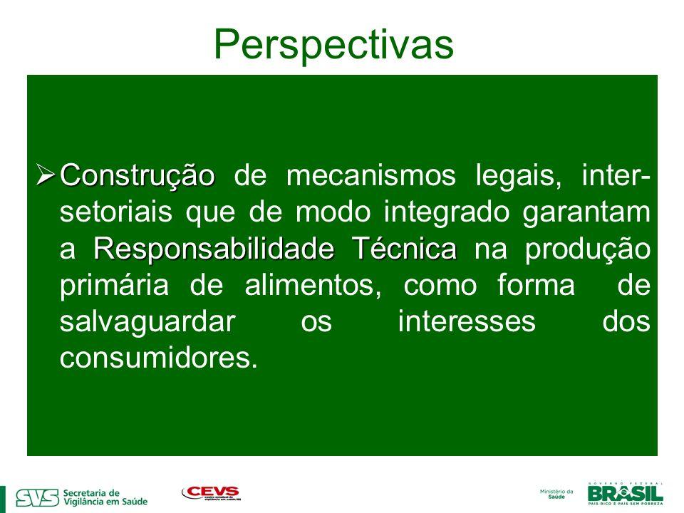 Perspectivas Construção Responsabilidade Técnica Construção de mecanismos legais, inter- setoriais que de modo integrado garantam a Responsabilidade T