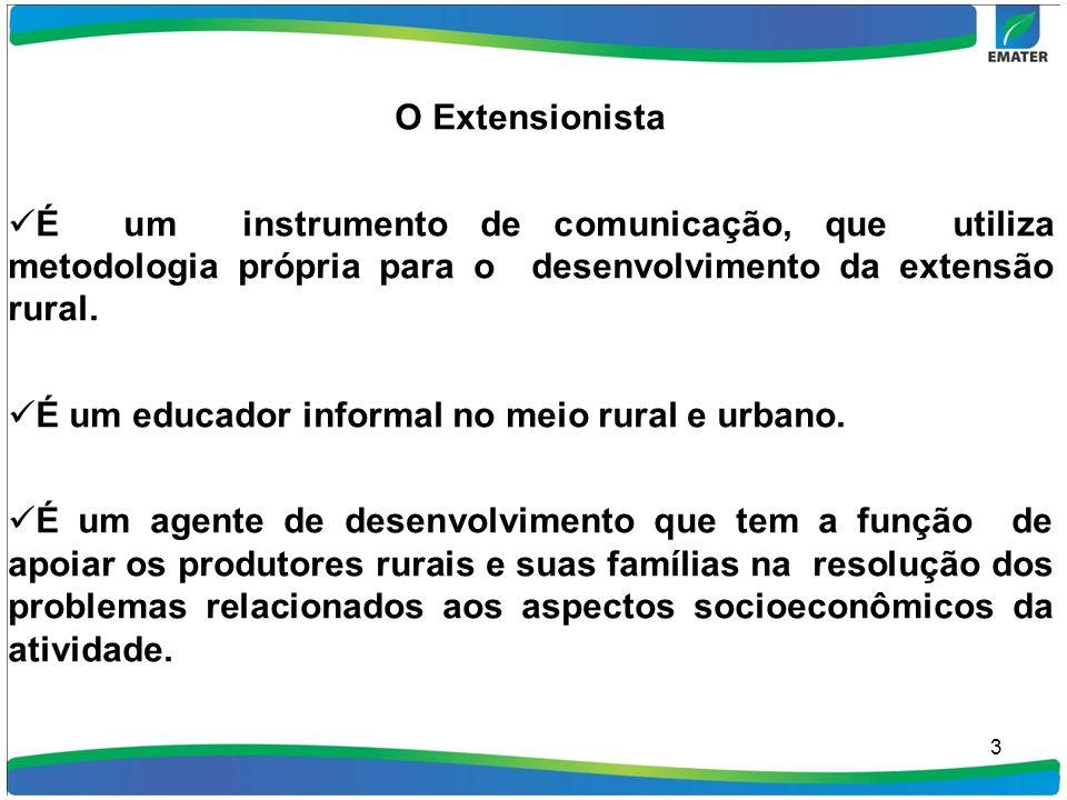 3 O Extensionista É um instrumento de comunicação, que utiliza metodologia própria para o desenvolvimento da extensão rural. É um educador informal no