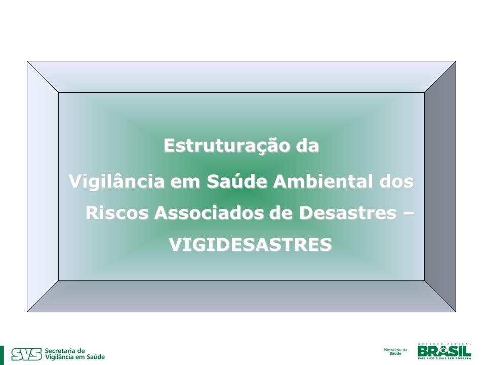 Estruturação da Vigilância em Saúde Ambiental dos Riscos Associados de Desastres – VIGIDESASTRES