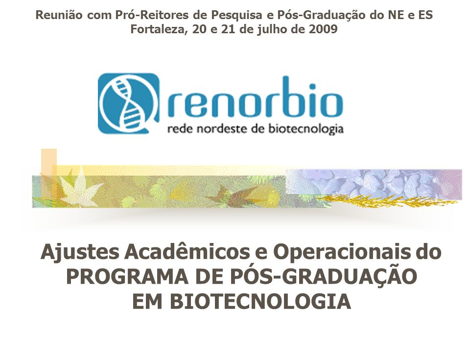 Reunião com Pró-Reitores de Pesquisa e Pós-Graduação do NE e ES Fortaleza, 20 e 21 de julho de 2009 Ajustes Acadêmicos e Operacionais do PROGRAMA DE P