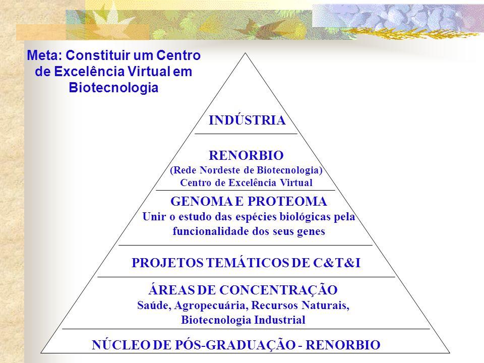 NÚCLEO DE PÓS-GRADUAÇÃO - RENORBIO ÁREAS DE CONCENTRAÇÃO Saúde, Agropecuária, Recursos Naturais, Biotecnologia Industrial PROJETOS TEMÁTICOS DE C&T&I