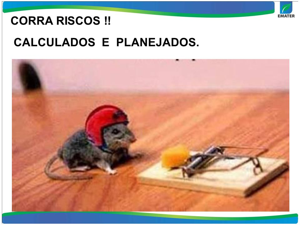 CORRA RISCOS !! CALCULADOS E PLANEJADOS.
