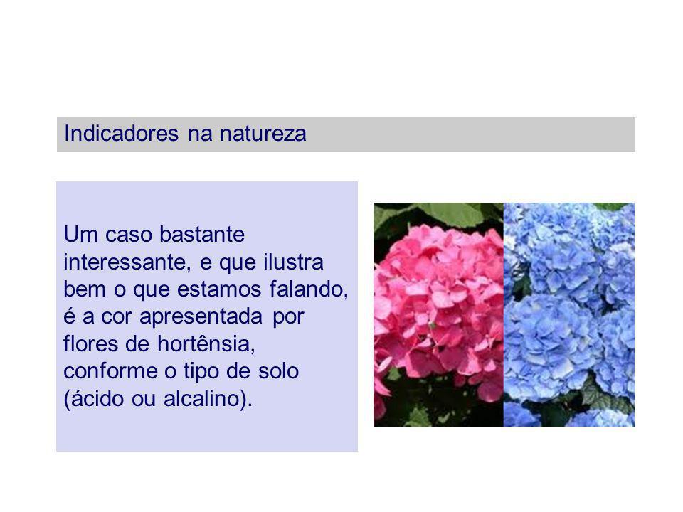 Indicadores na natureza Um caso bastante interessante, e que ilustra bem o que estamos falando, é a cor apresentada por flores de hortênsia, conforme