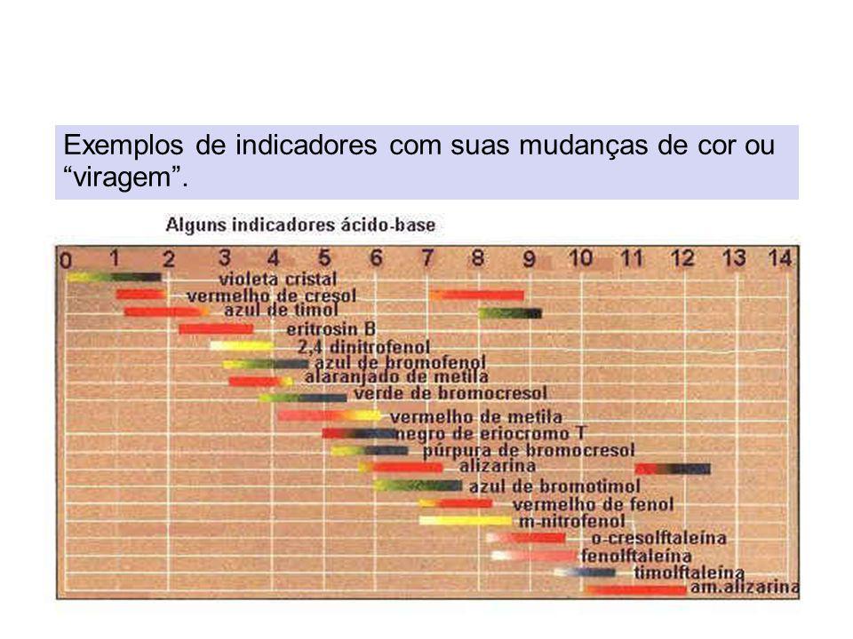 Exemplos de indicadores com suas mudanças de cor ou viragem.