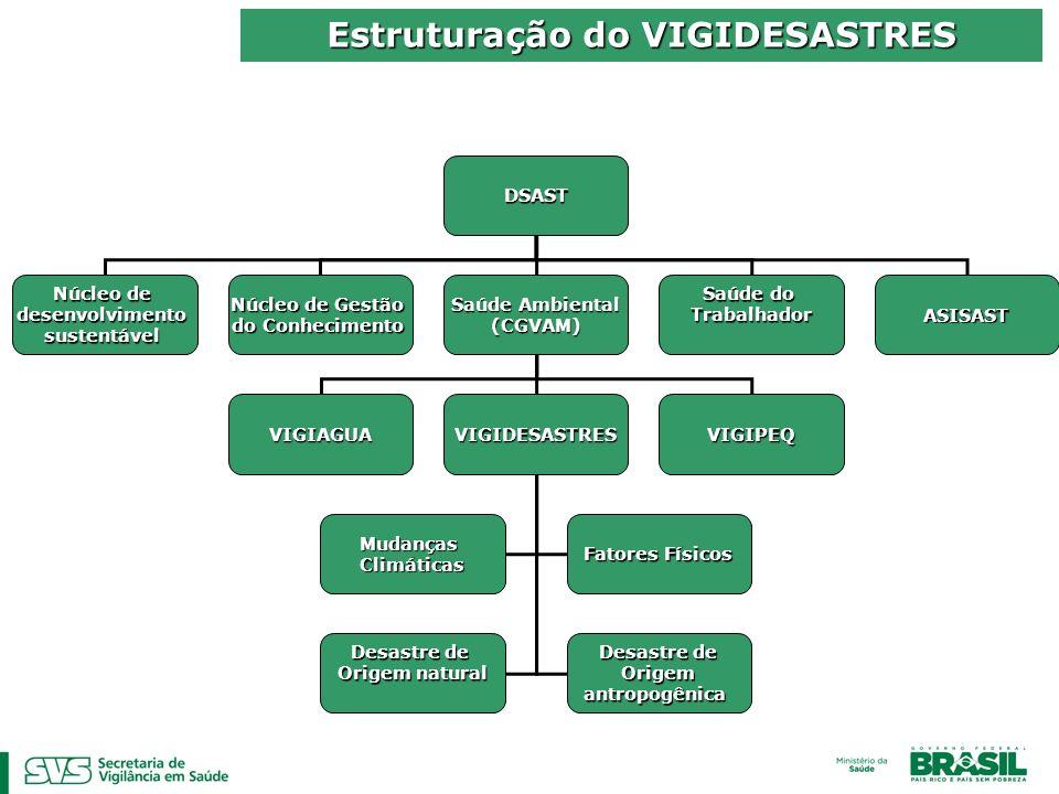 Estruturação do VIGIDESASTRES DSAST Núcleo de desenvolvimentosustentável Saúde Ambiental (CGVAM) Saúde do Trabalhador Núcleo de Gestão do Conhecimento VIGIAGUAVIGIDESASTRESVIGIPEQ ASISAST MudançasClimáticas Fatores Físicos Desastre de Origemantropogênica Origem natural