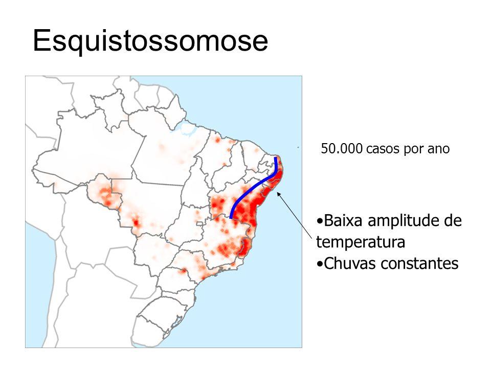 Esquistossomose 50.000 casos por ano Baixa amplitude de temperatura Chuvas constantes