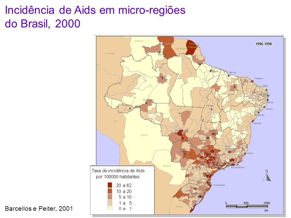 Barcellos e Peiter, 2001 Incidência de Aids em micro-regiões do Brasil, 2000