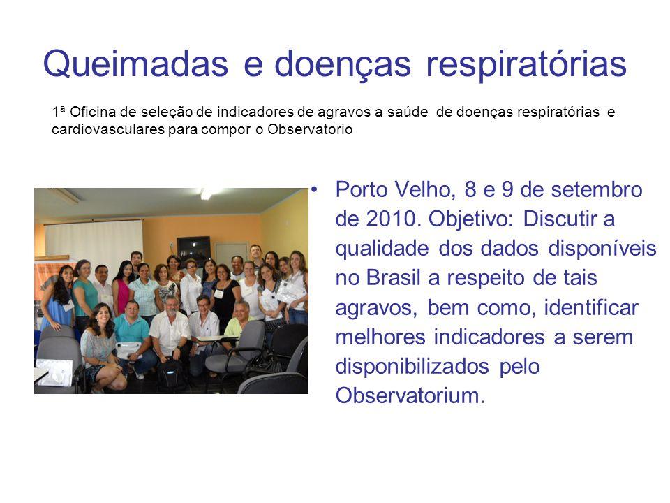 Queimadas e doenças respiratórias Porto Velho, 8 e 9 de setembro de 2010. Objetivo: Discutir a qualidade dos dados disponíveis no Brasil a respeito de