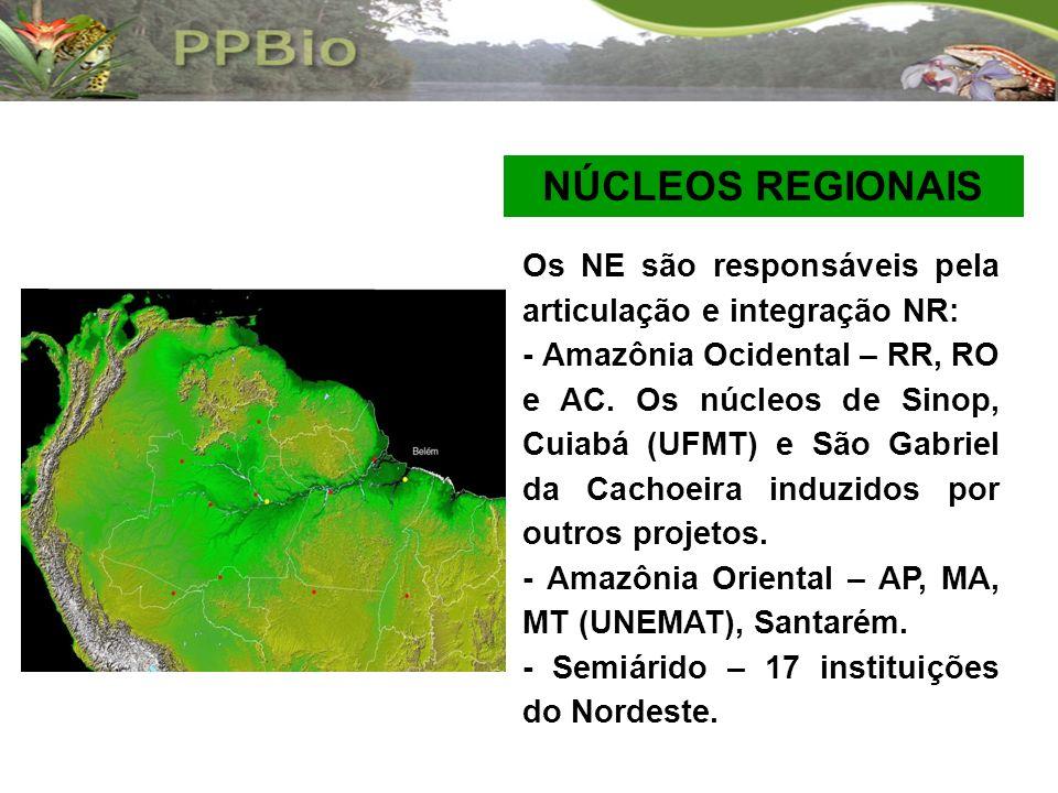 NÚCLEOS REGIONAIS Os NE são responsáveis pela articulação e integração NR: - Amazônia Ocidental – RR, RO e AC. Os núcleos de Sinop, Cuiabá (UFMT) e Sã