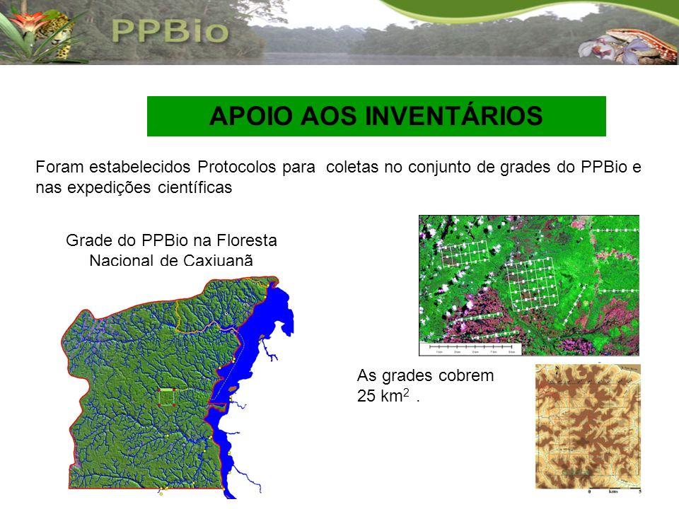 Foram estabelecidos Protocolos para coletas no conjunto de grades do PPBio e nas expedições científicas Grade do PPBio na Floresta Nacional de Caxiuan