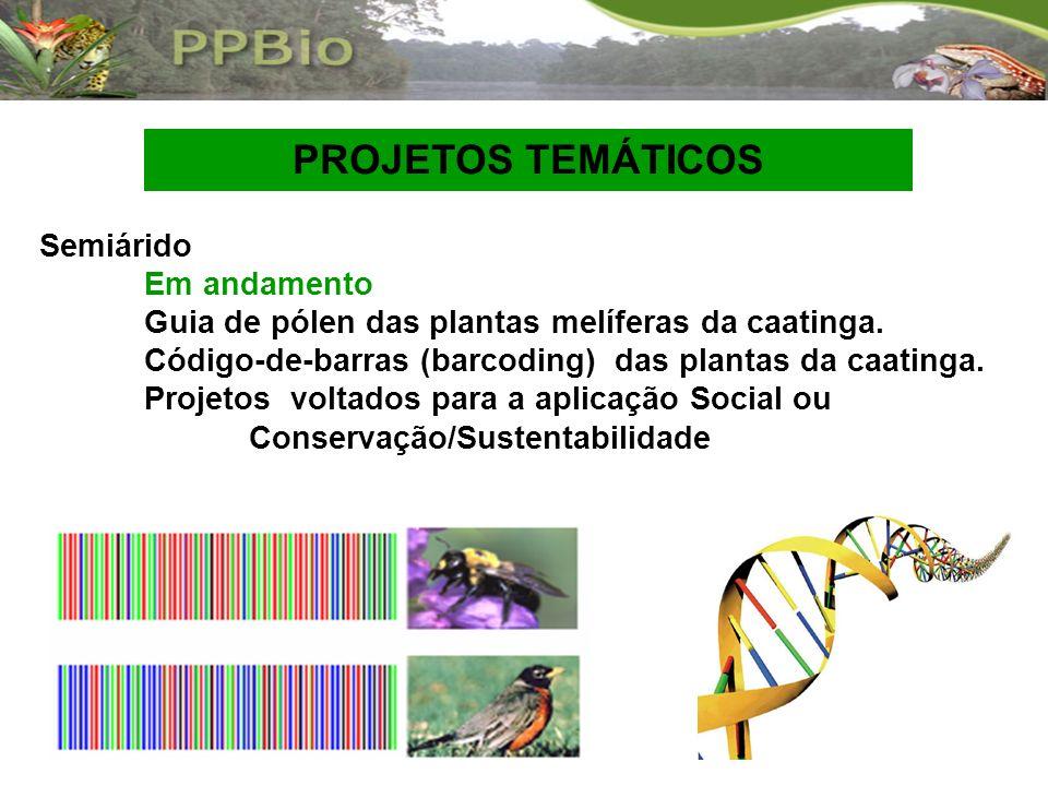 Semiárido Em andamento Guia de pólen das plantas melíferas da caatinga. Código-de-barras (barcoding) das plantas da caatinga. Projetos voltados para a