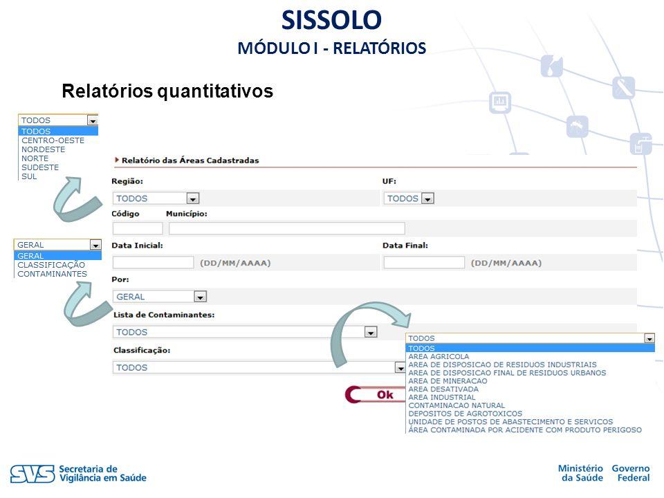 Relatórios quantitativos SISSOLO MÓDULO I - RELATÓRIOS