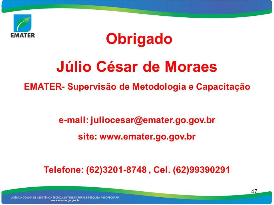 47 Obrigado Júlio César de Moraes EMATER- Supervisão de Metodologia e Capacitação e-mail: juliocesar@emater.go.gov.br site: www.emater.go.gov.br Telef