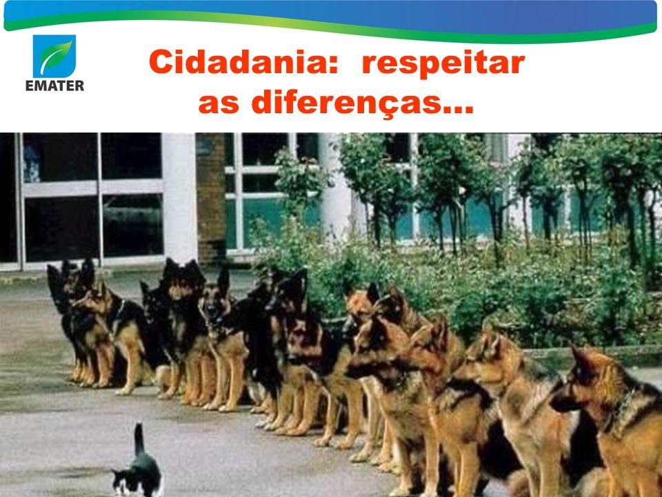 7 Cidadania: respeitar as diferenças...