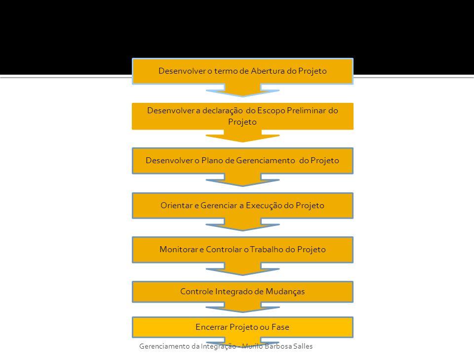 São processos onde é verificada a completude do trabalho, se os interessados foram satisfeitos, e onde são feitos os registros dos resultados finais para uso futuro; É a realização da parte de encerramento do Plano de Gerenciamento do Projeto; São também os processos que encerram a parte do escopo do projeto e as atividades associadas, aplicáveis a uma determinada fase; São processos que geralmente são ignorados pelo gerente do projeto.