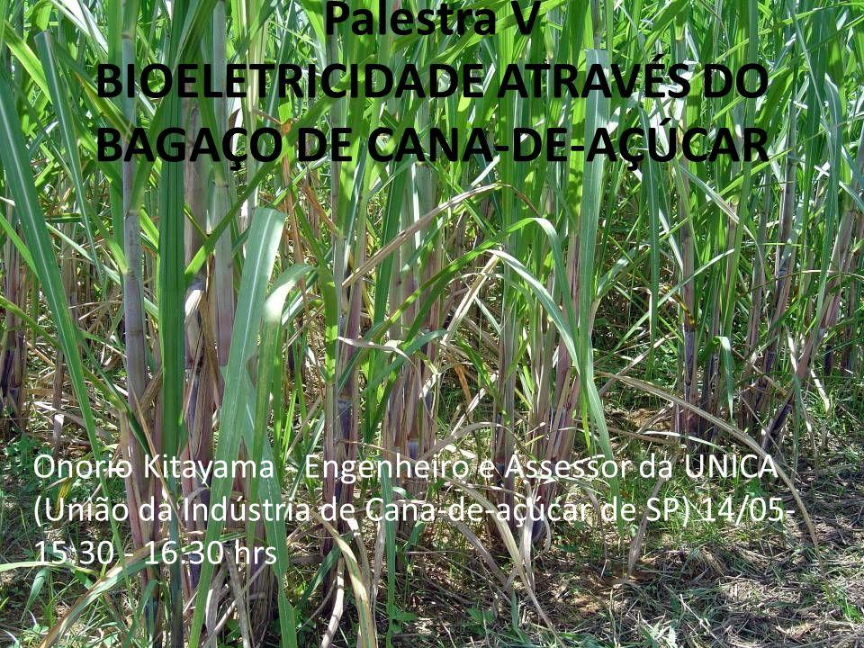 Palestra V BIOELETRICIDADE ATRAVÉS DO BAGAÇO DE CANA-DE-AÇÚCAR Onorio Kitayama - Engenheiro e Assessor da UNICA (União da Indústria de Cana-de-açúcar