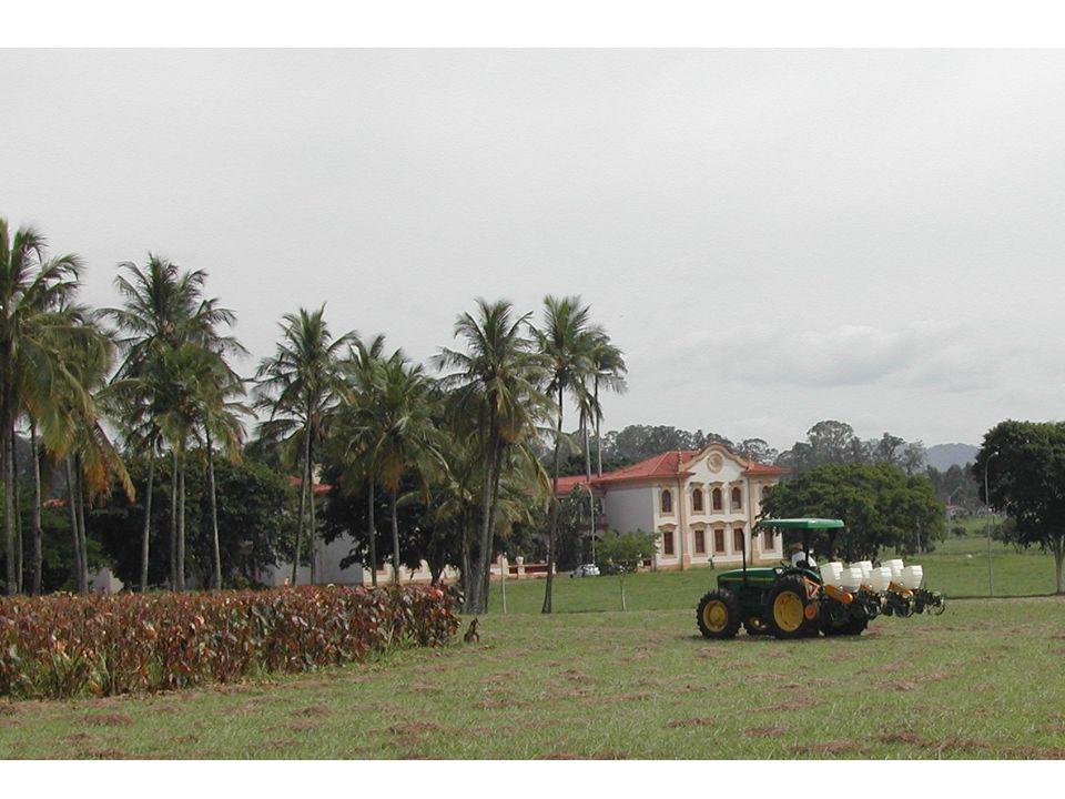 Palestra VII - SELO SERINGUEIRA AMBIENTAL - NEUTRALIZAÇÃO DE EMISSÕES DE GASES DE EFEITO ESTUFA