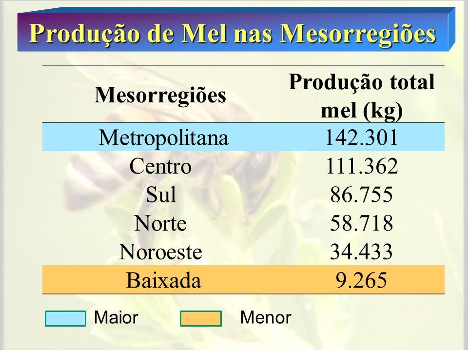 Produção de Mel - Municípios MaioresMenores São Fidelis 46.666kg C de Macabu 50kg Barra do Piraí 34.914kg Nova Iguaçu 75kg Itaboraí 31.905kg Areal 200kg