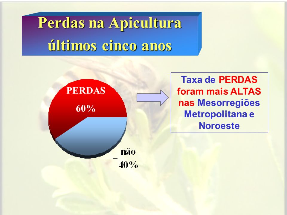 Perdas na Apicultura nos municípios últimos cinco anos OS RELATOS DE PERDAS ABRANGERAM 72, dos 92 MUNICÍPIOS .