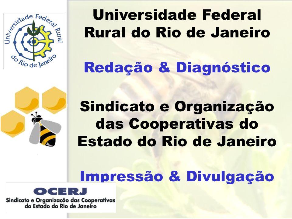 CENSO APÍCOLA Número de apicultores Caracterizar o apicultor e sua criação Diagnosticar a Apicultura Elaborar banco de dados Divulgar as informações.