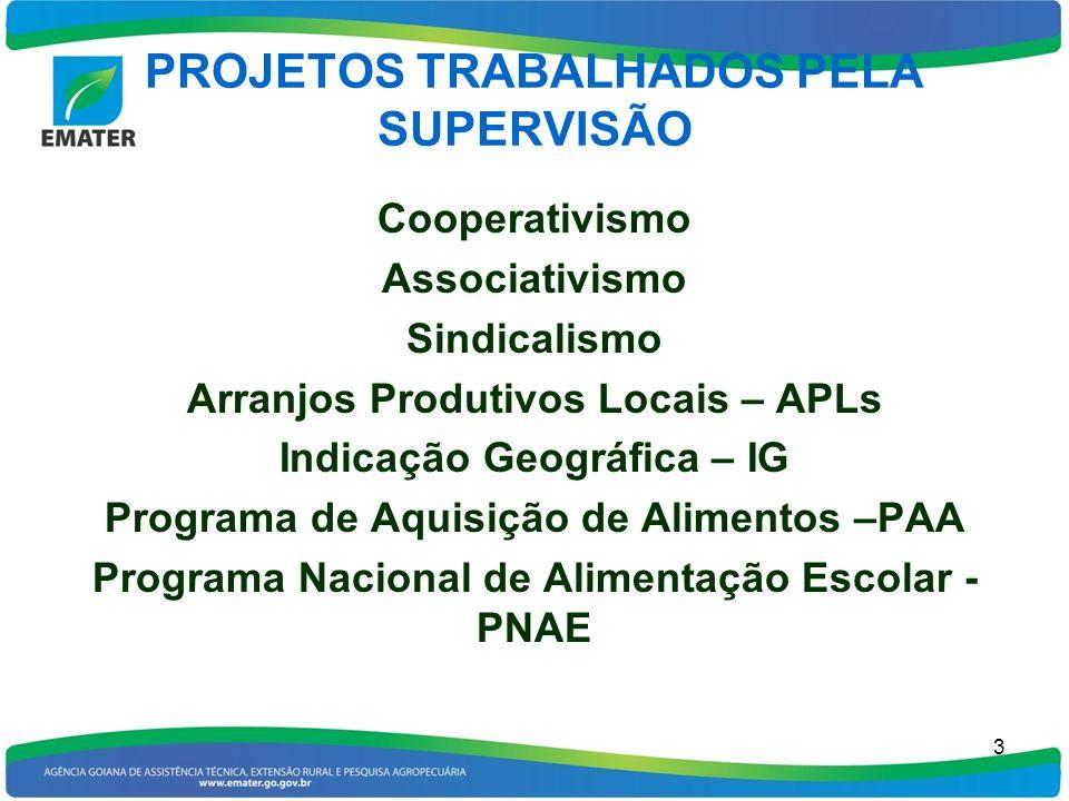 PROJETOS TRABALHADOS PELA SUPERVISÃO Cooperativismo Associativismo Sindicalismo Arranjos Produtivos Locais – APLs Indicação Geográfica – IG Programa d