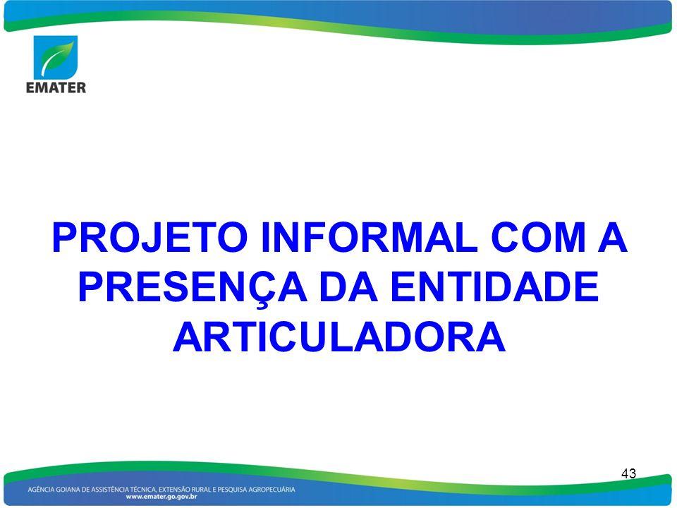 PROJETO INFORMAL COM A PRESENÇA DA ENTIDADE ARTICULADORA 43