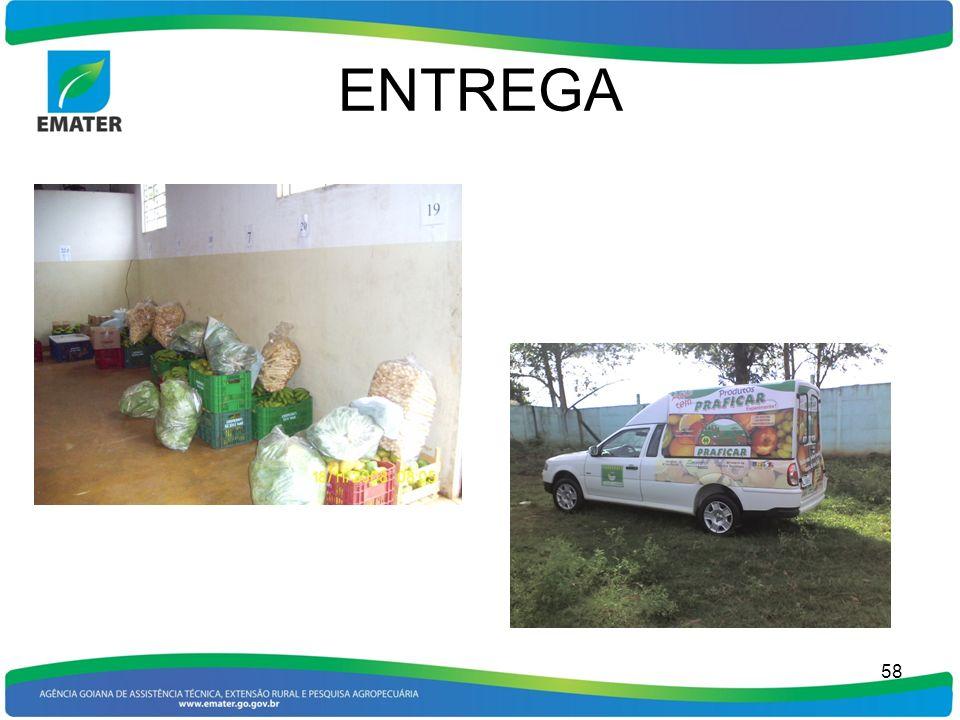 ENTREGA 58