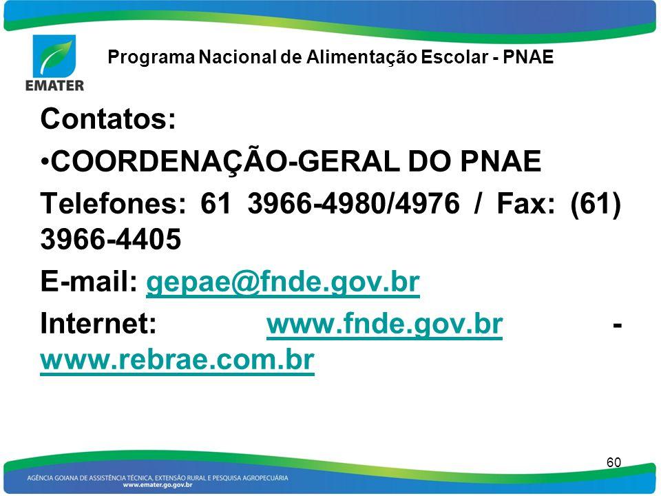 Programa Nacional de Alimentação Escolar - PNAE 60 Contatos: COORDENAÇÃO-GERAL DO PNAE Telefones: 61 3966-4980/4976 / Fax: (61) 3966-4405 E-mail: gepa