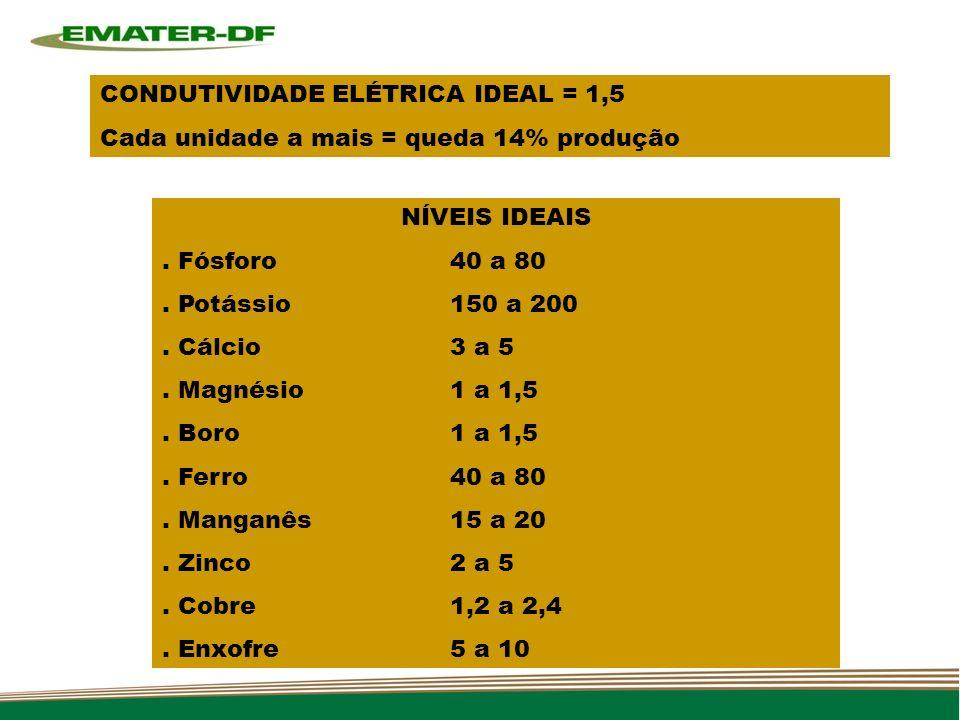 CONDUTIVIDADE ELÉTRICA IDEAL = 1,5 Cada unidade a mais = queda 14% produção NÍVEIS IDEAIS.