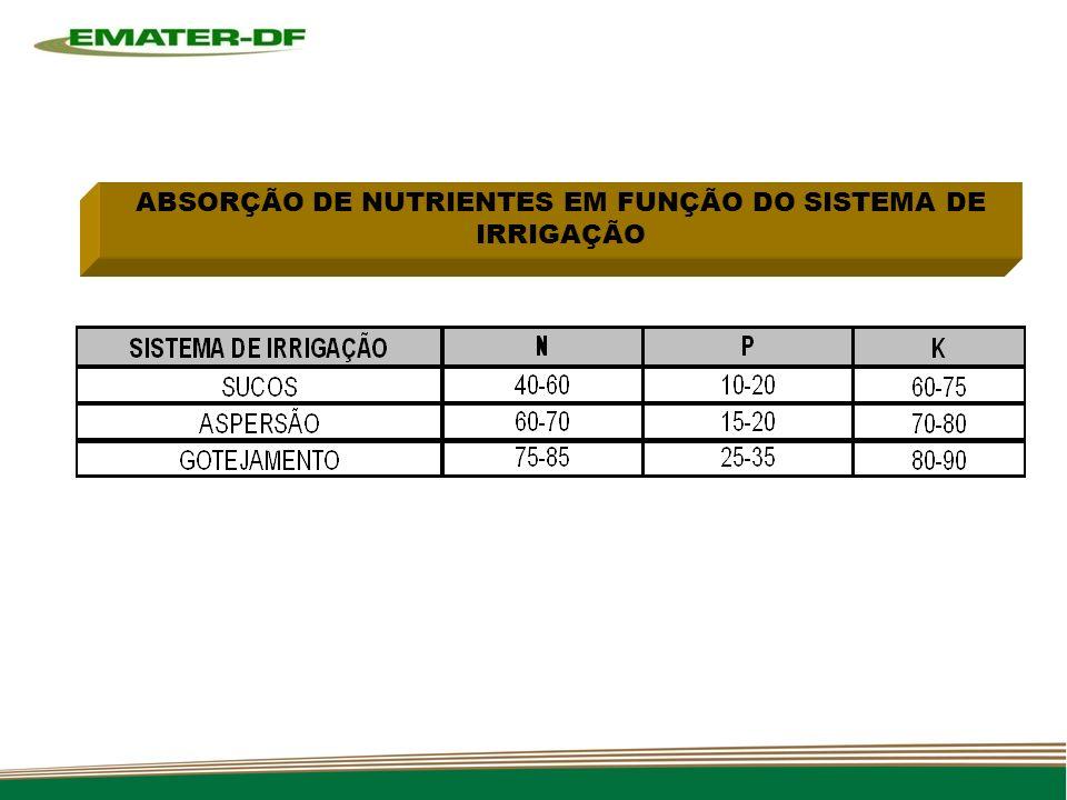 ABSORÇÃO DE NUTRIENTES EM FUNÇÃO DO SISTEMA DE IRRIGAÇÃO