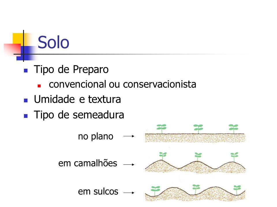 Solo Tipo de Preparo convencional ou conservacionista Umidade e textura Tipo de semeadura no plano em camalhões em sulcos