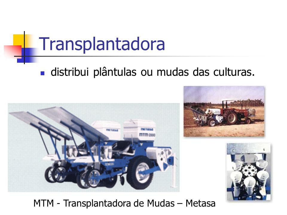 Transplantadora distribui plântulas ou mudas das culturas. MTM - Transplantadora de Mudas – Metasa