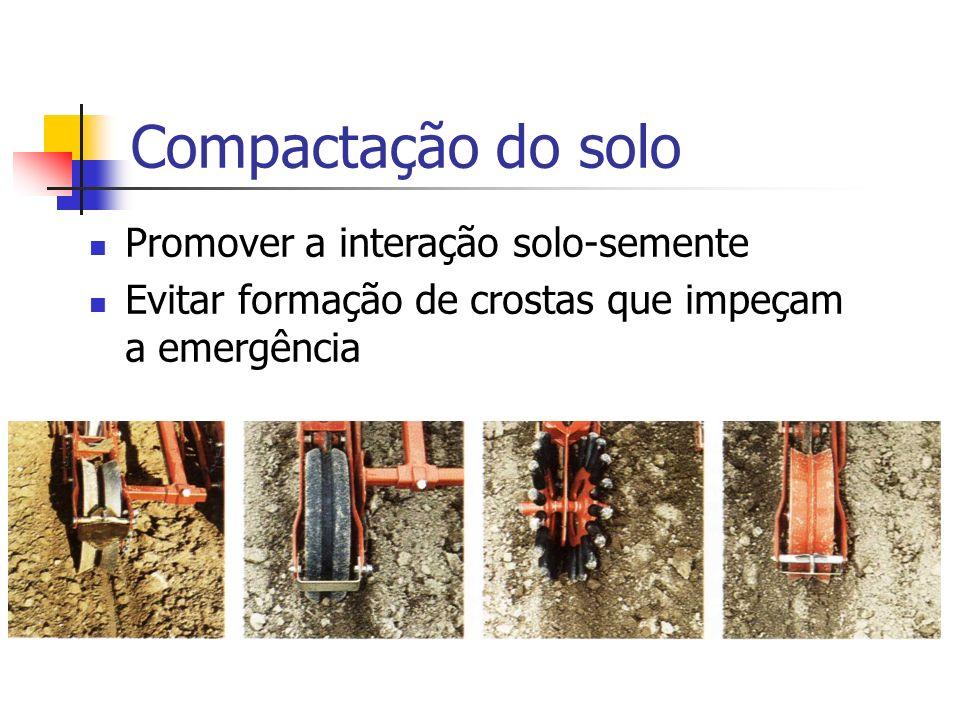 Promover a interação solo-semente Evitar formação de crostas que impeçam a emergência Compactação do solo