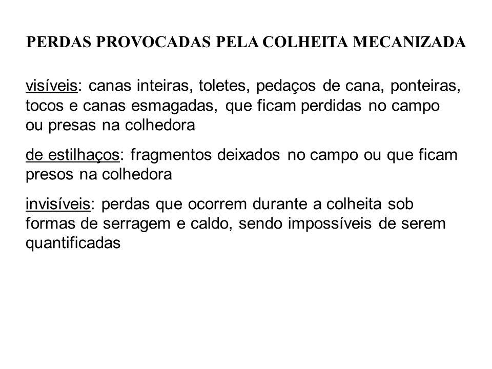 PERDAS PROVOCADAS PELA COLHEITA MECANIZADA visíveis: canas inteiras, toletes, pedaços de cana, ponteiras, tocos e canas esmagadas, que ficam perdidas