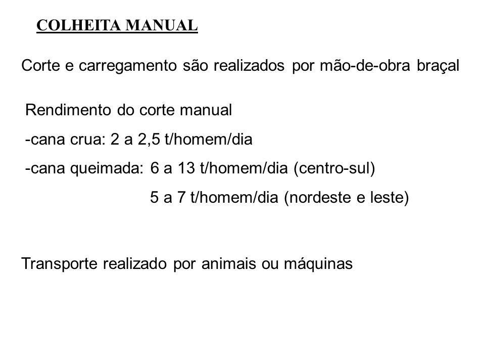 COLHEITA MANUAL Corte e carregamento são realizados por mão-de-obra braçal Rendimento do corte manual -cana crua: 2 a 2,5 t/homem/dia -cana queimada: