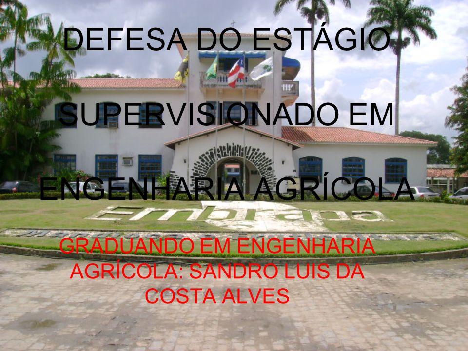 ORIENTADORES ORIENTADOR INTERNO: Dr.LEONARDO DUARTE BATISTA DA SILVA.