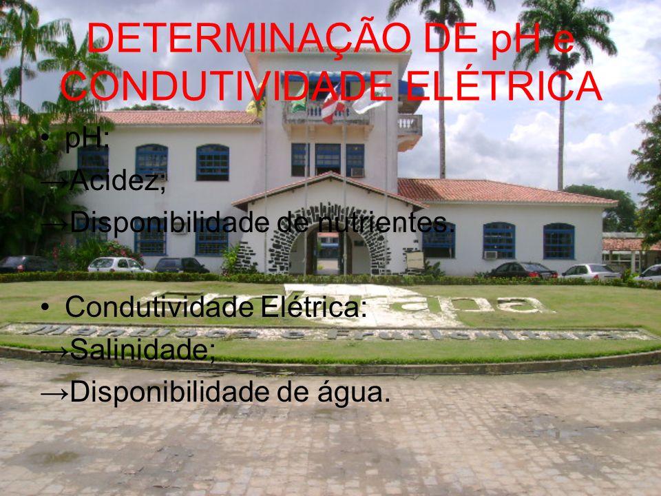 DETERMINAÇÃO DE pH e CONDUTIVIDADE ELÉTRICA pH: Acidez; Disponibilidade de nutrientes. Condutividade Elétrica: Salinidade; Disponibilidade de água.